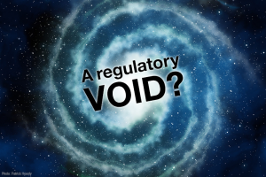 "Senate bill dubbed a regulatory ""void"""