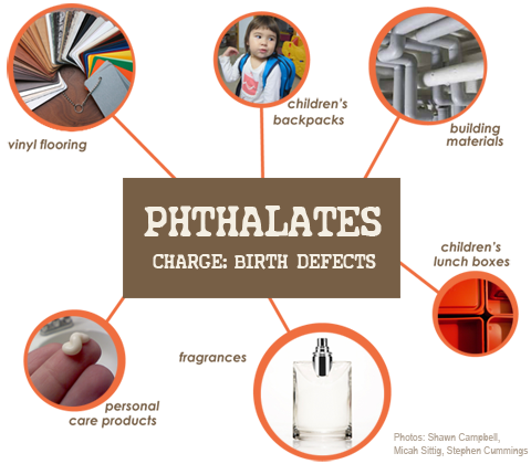 Phthalates are found vinyl flooring, children's backpacks, building materials, personal care products, fragrances, children's lunch boxes and other products.