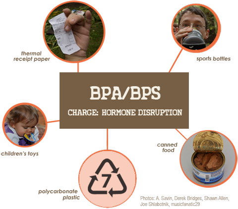 BPA is found in children's toys, polycarbonate plastic, sports bottles, canned food and other products. BPA and BPS is found in thermal receipt paper.